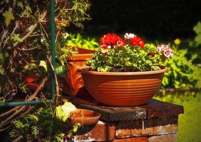 Gestaltung von privaten Gartenanlagen