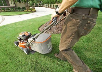 Gartenarbeiten - Rasenmähen durch Gala Buduri