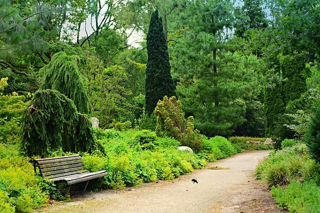 Gestaltung und Anlage von öffentlichen Grünanlagen